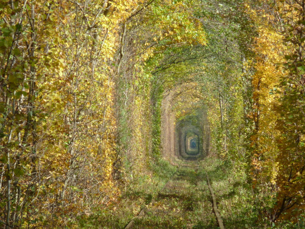 tunnel dell'amore
